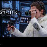 Hot Toys - Star Wars - EP5 - Princess Leia collecitble figure_PR12