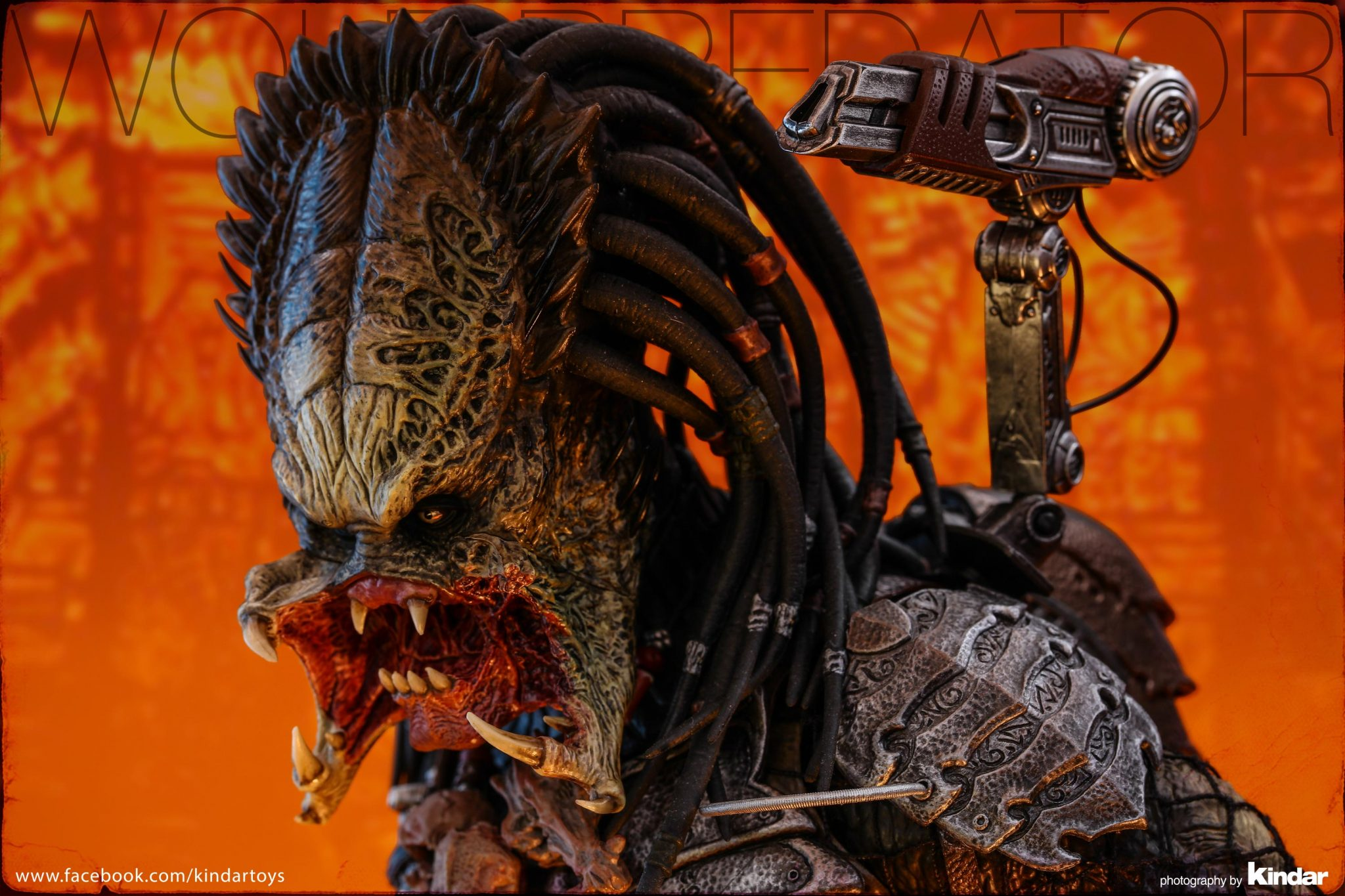 bloggerreview_kindar_predator (1)